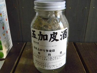 うこぎ根皮チップ(30g×5パック入り)焼酎用5~10L用