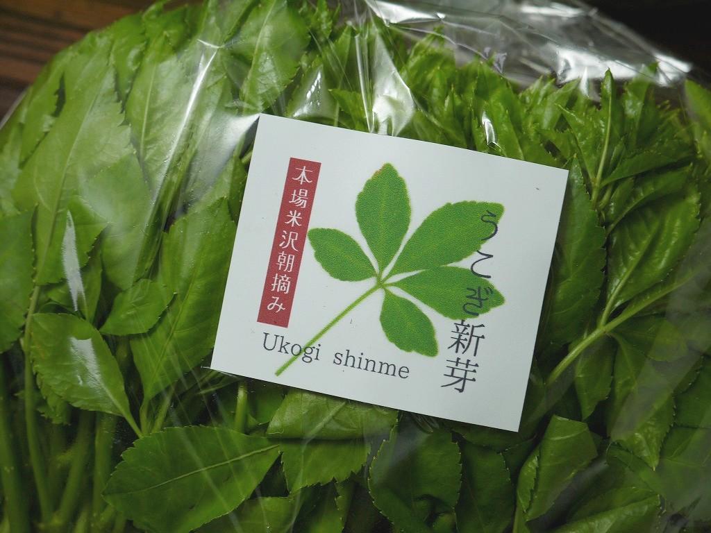 朝摘み 生うこぎ新芽(120g袋詰)